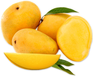 The Empress and The Mangoes